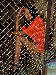 Anal Prisoner